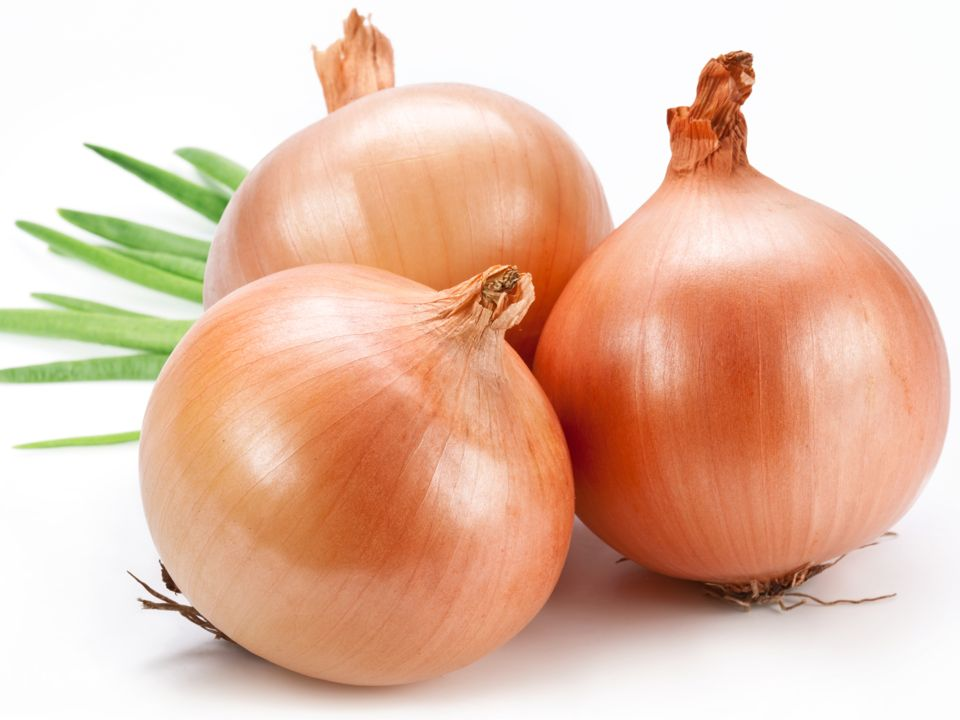 Three onions on a white background.